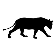 black silhouette of running lioness on white background of vector illustration