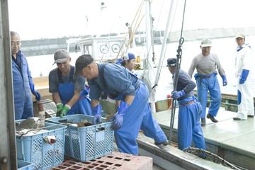 港で働く漁師たち