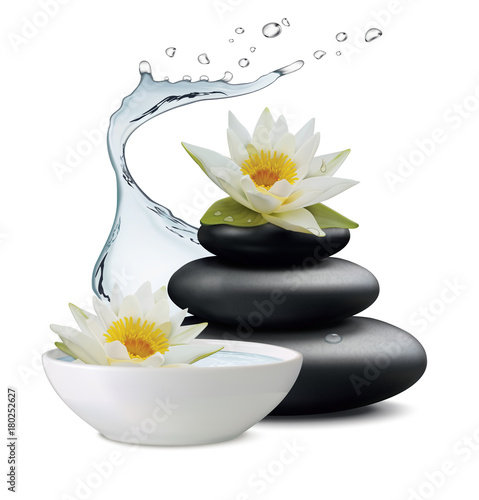 Water Lily Flowers And Zen Stone Bowl With On White Background Vector Ilration