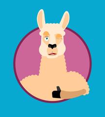 Lama Alpaca thumbs up and winks emoji. Animal happy emoji. Vector illustration