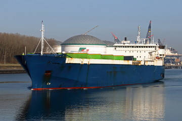 Ro-Ro Schiff in Rotterdam