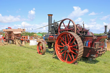 Steam Traction engine driving a thresher