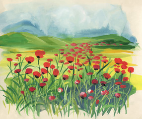 Colorful meadow with red tulips at spring time.