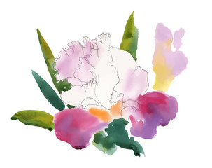 Closeup of watercolor hand drawn summer flowers.