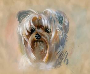 Hand drawn cute yorkshire terrier dog