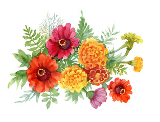 Watercolor Summer blooming flowers illustration.