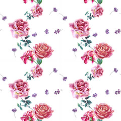 Flowers rose with leaves, watercolor, illustration. Seamless pattern