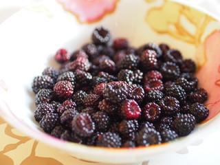 Black raspberries, blackberries in the dish