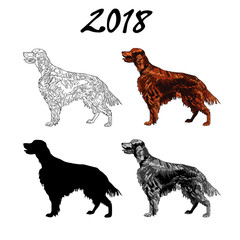 Vector illustration of an image of a dog breed of Setter. Black line, black and white and gray spots, black silhouette, color image. The inscription 2018.