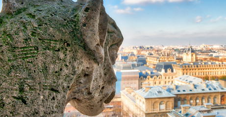 Wall Mural - Aerial view of Paris City from the top of Notre Dame Cathedral with stone demon gargoyle
