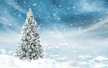 Schneelandschaft mit eingeschneiten Tannenbaum