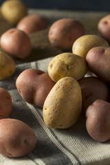 Raw Organic Mixed Baby Potatoes