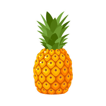 Summer fruits for healthy lifestyle. Pineapple fruit. Vector illustration cartoon flat icon isolated on white.