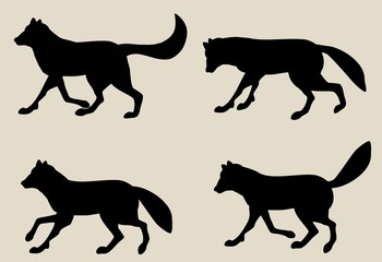Set of Vector silhouettes of wolves, isolated on white