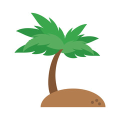Beach and palm icon vector illustration graphic design
