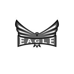 Logo eagle spread the wings, hawk sport mascot emblem, bird predator t-shirt print design element