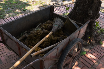 fresh manure on cart. elephant poo on street in Thailand