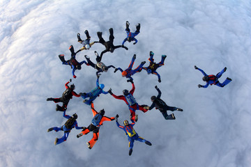 Skydivers in the sky