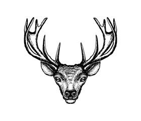 deer head vintage illustration