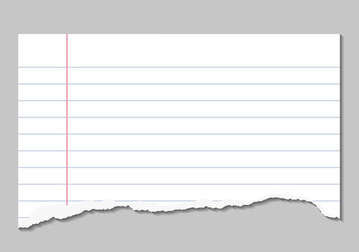 Vector realistic illustrations of torn page of notebook lined paper
