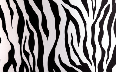 Abstract black and white picture of a Zebra.