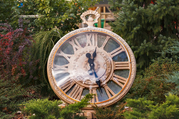 Close-up decorative vintage watch in park. Concept of change of seasons