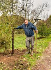 Senior man is working with a rake in the autumn garden.