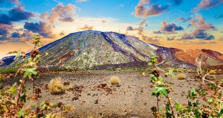 Paisaje volcanico y parque nacional del Teide en Tenerife.Islas Canarias.España.