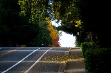 Late indian summer on Education Hill - 2