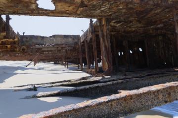 Schiffswrack - Bauch - Fraser Island - Australien