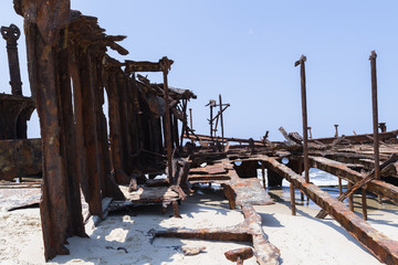 Schiffs-Skelet - Fraser Island - Wrack - Australien
