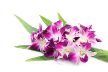 Tuinposter Orchidee Fresh orchid flowers decorated with pandan leaves.