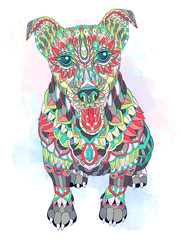 Patterned dog terrier