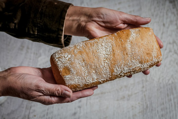 Baked bread in woman hands