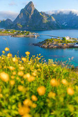 Landscape of Summer Lofoten islands is an archipelago in the county of Nordland, Norway.