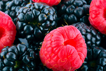blueberry and rasberry background