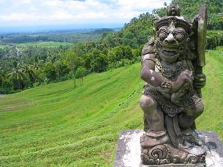 Bali. Arrozales verdes  en la isla de  Bali, Indonesia
