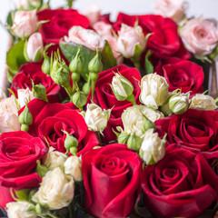 Rose buds, beautiful flowers, selective focus