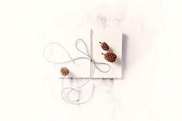 An Arrangement of Envelope and Cones