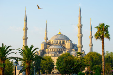 Blue Mosque - Istanbul, Turkey.