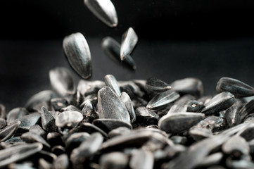 Sunflower seeds isolated