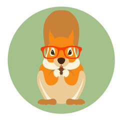 squirrel rodent in glasses vector illustration flat style