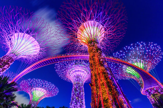 Singapore City, Singapore. Supertree Grove at the Gradens by the Bay.