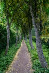 Walkway in Scotland