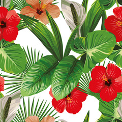 Hibiscus and tropical leaves white background