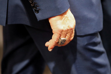 Former California governor and 'Mr. Universe' Arnold Schwarzenegger's ring is seen on his hand as he attends the COP23 UN Climate Change Conference 2017, hosted by Fiji but held in Bonn