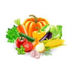 vegetables on white background vector