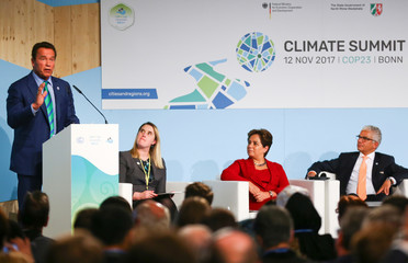Former California governor and 'Mr. Universe' Arnold Schwarzenegger speaks during the COP23 UN Climate Change Conference 2017, hosted by Fiji but held in Bonn