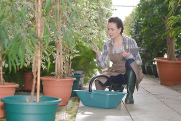 inspired young woman gardener in greenhouse