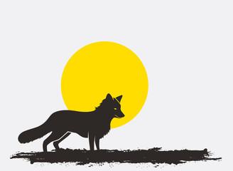 Wild Fox Silhouette in Sunlight Vector